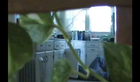 有趣的成年人的视频网站的管道工的性犯罪法》,2003年